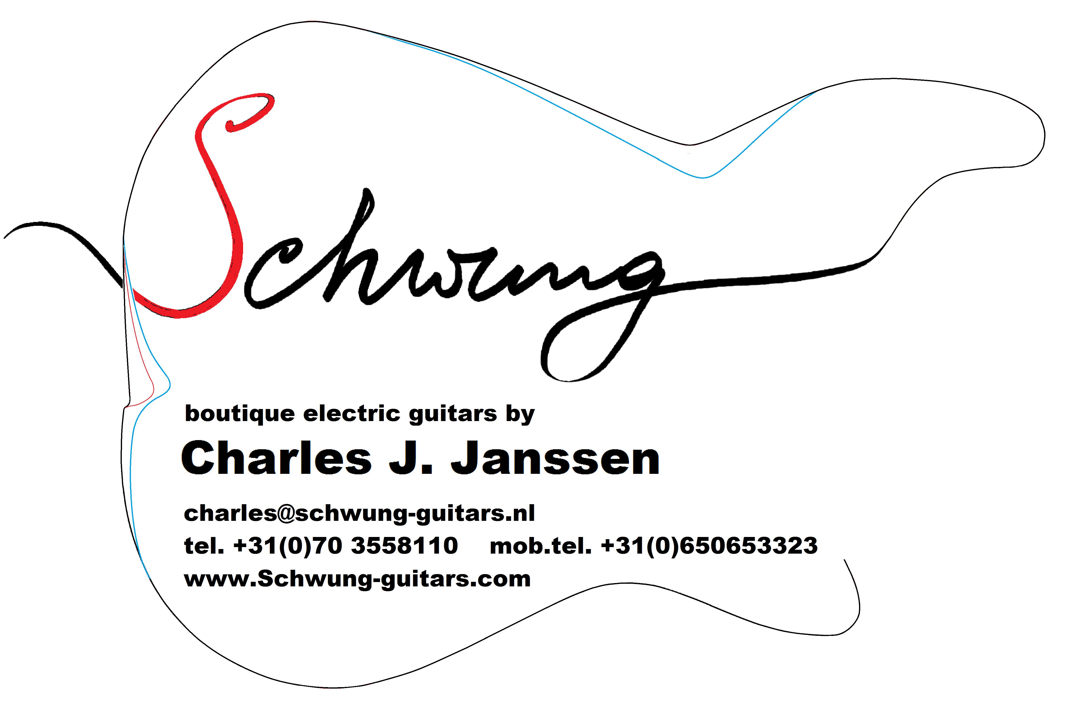 contact schwung guitars
